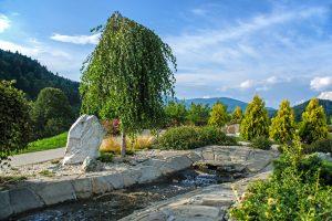 Sensory water garden